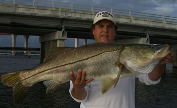 Cpt-Glen-31-lb-Snook