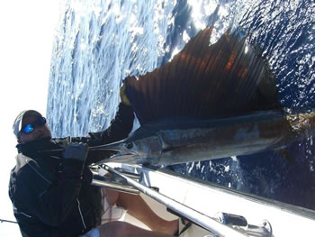 Matt-Stahley3-24-2011